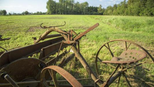 Antica macchina agricola a Bernate - Parco del Ticino