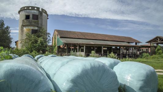 Fieno fasciato - Parco del Ticino