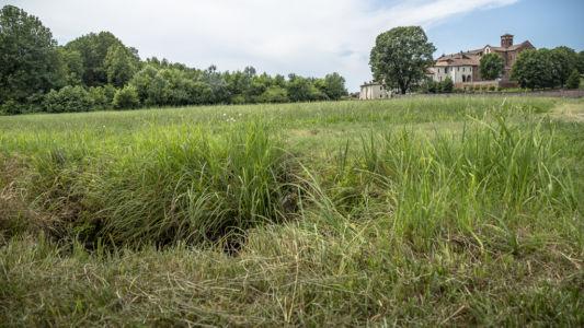 Marcita di Morimondo - Parco del Ticino