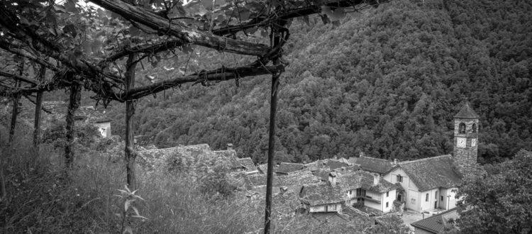 Terrazzamenti Viganella