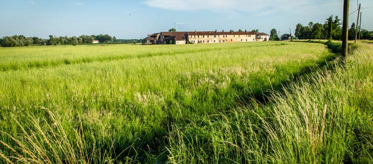 Paesaggi di Marcita - Parco Ticino