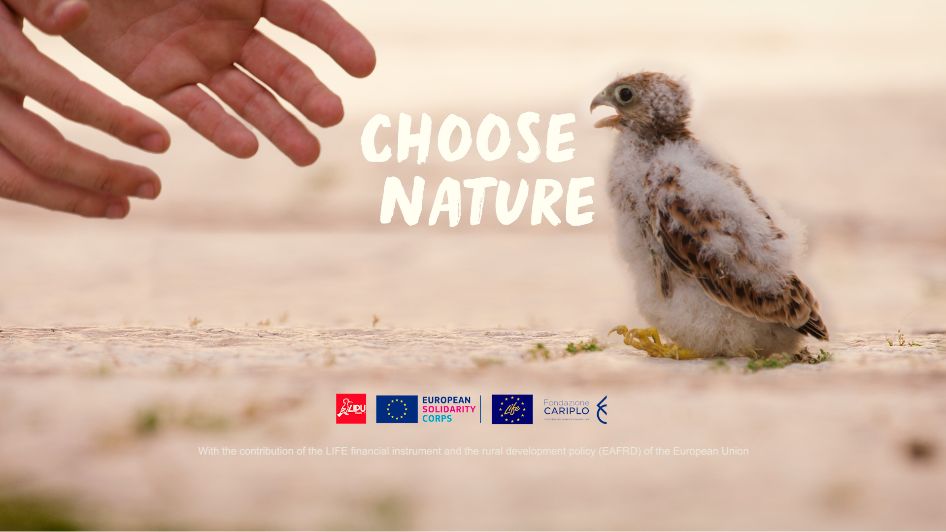 Life Choose Nature