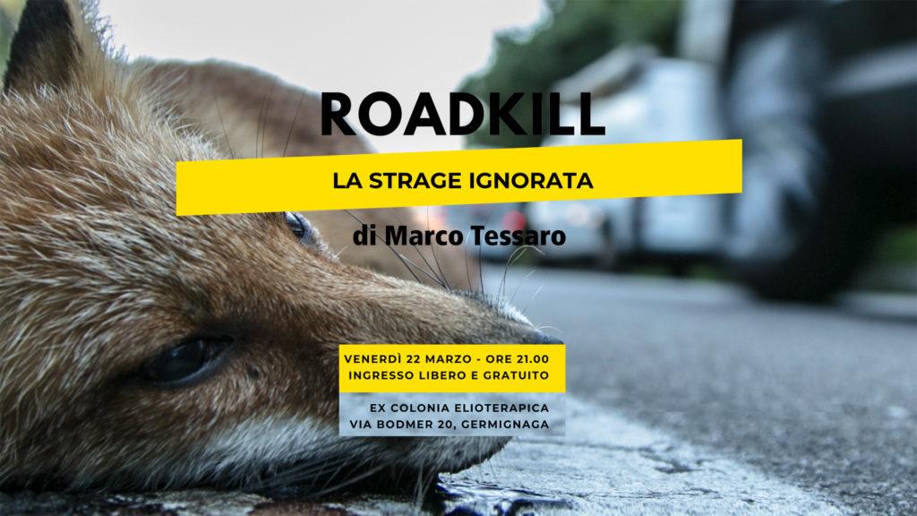Roadkill - La strage ignorata
