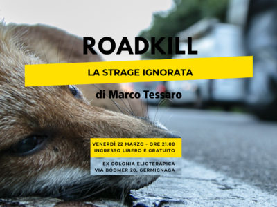 Roadkill - La strage ignorata