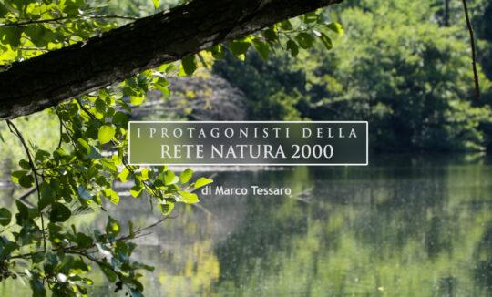 Rete Natura 2000 Torino